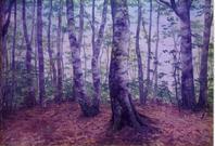 ブナ林壁画